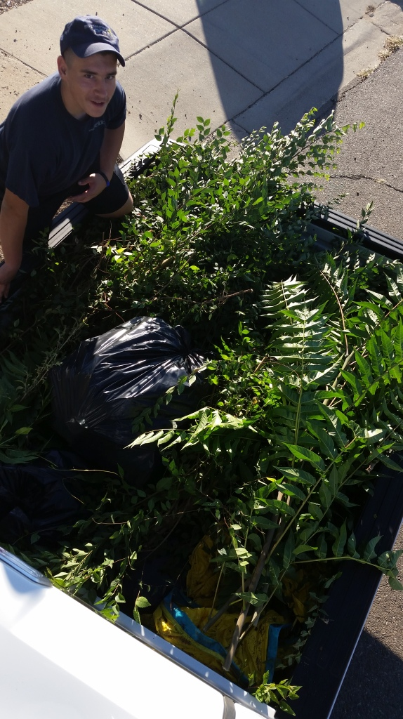 FPD Code Compliance Yard Cleanup 9-26-15 (10)