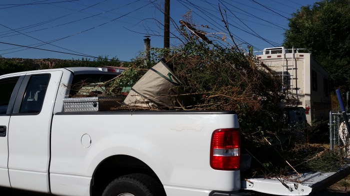 FPD Code Compliance Yard Cleanup 9-26-15 (20)