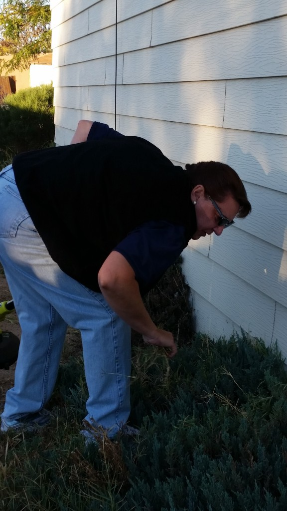 FPD Code Compliance Yard Cleanup 9-26-15 (3)